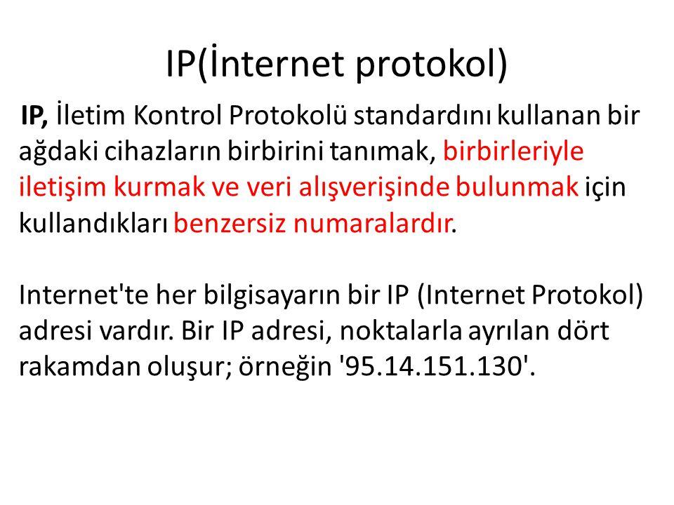 IP(İnternet protokol)