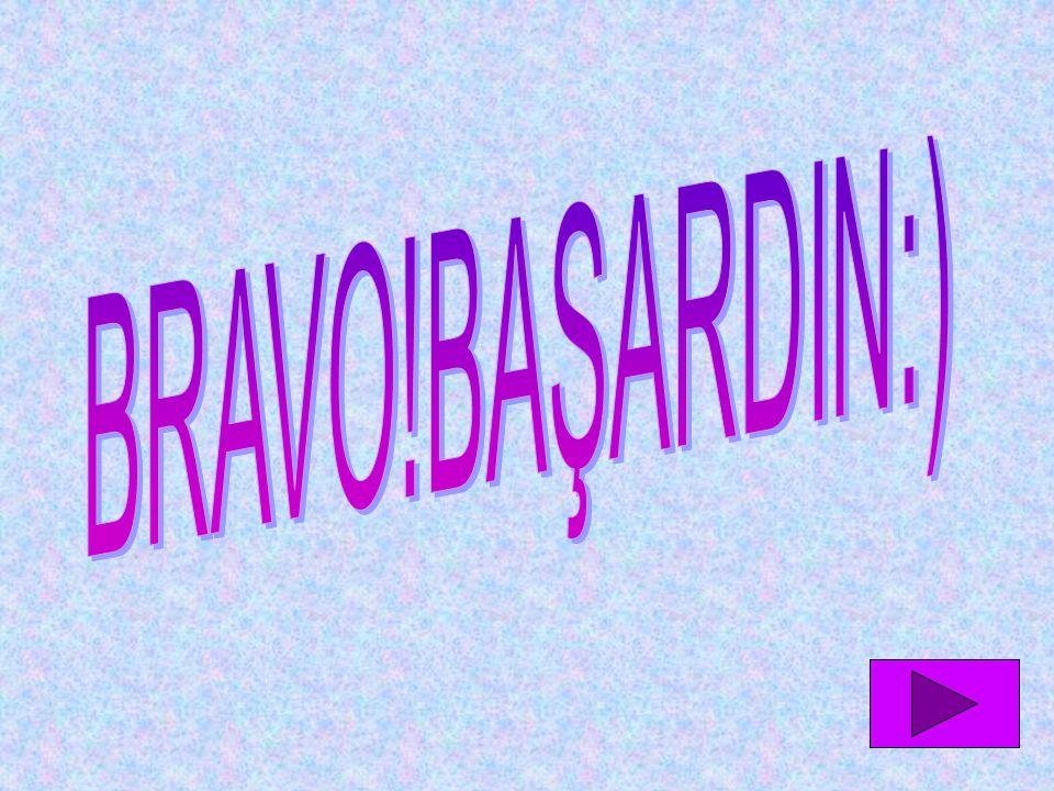 BRAVO!BAŞARDIN:)