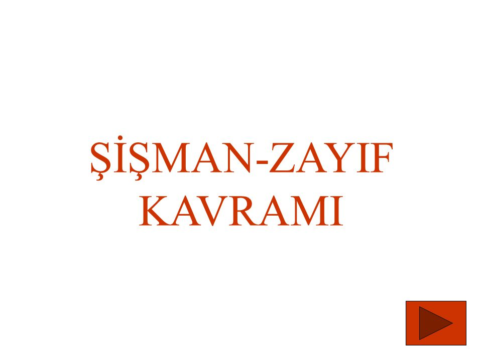 ŞİŞMAN-ZAYIF KAVRAMI