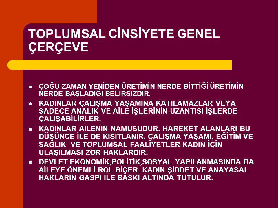 TOPLUMSAL CİNSİYETE GENEL ÇERÇEVE