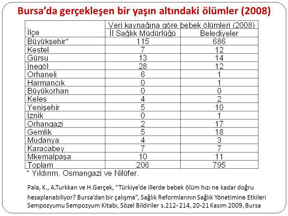 Bursa'da gerçekleşen bir yaşın altındaki ölümler (2008)