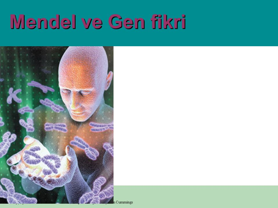 Mendel ve Gen fikri