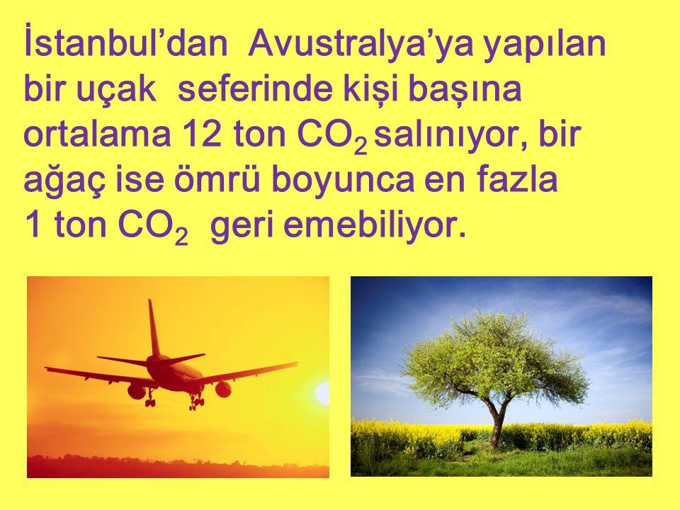 İstanbul'dan Avustralya'ya yapılan bir uçak seferinde kişi başına ortalama 12 ton CO2 salınıyor, bir ağaç ise ömrü boyunca en fazla