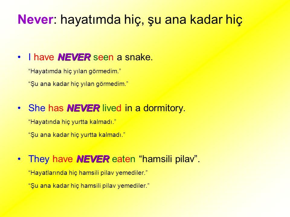 Never: hayatımda hiç, şu ana kadar hiç