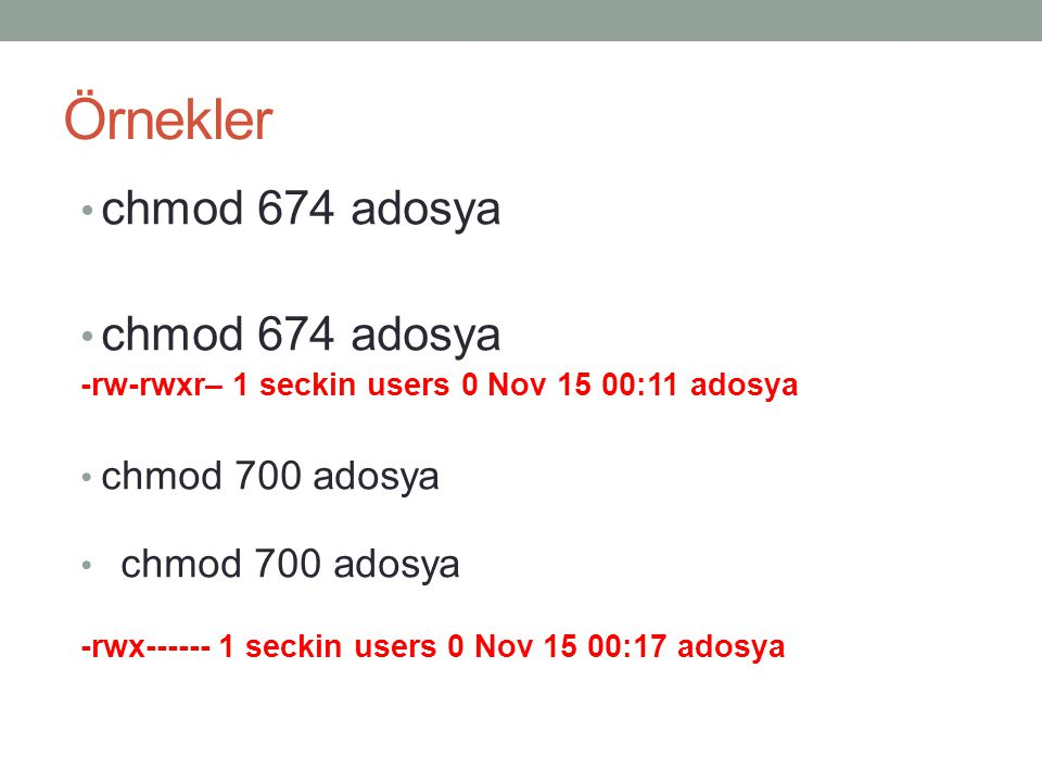 Örnekler chmod 674 adosya chmod 700 adosya
