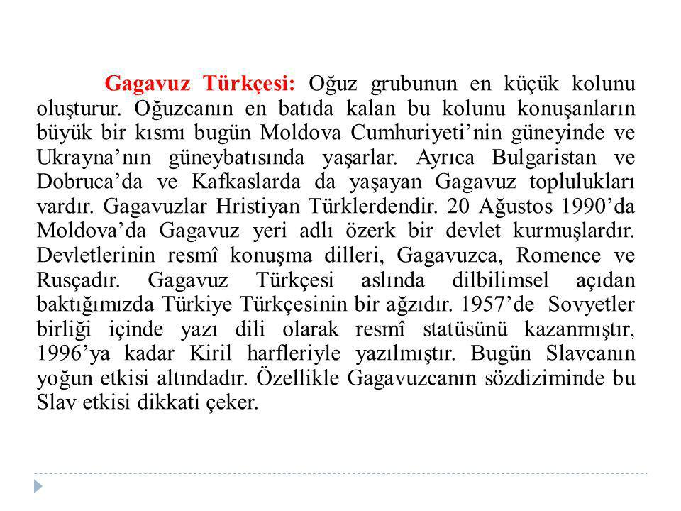 Gagavuz Türkçesi: Oğuz grubunun en küçük kolunu oluşturur