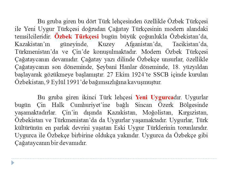 Bu gruba giren bu dört Türk lehçesinden özellikle Özbek Türkçesi ile Yeni Uygur Türkçesi doğrudan Çağatay Türkçesinin modern alandaki temsilcileridir. Özbek Türkçesi bugün büyük çoğunlukla Özbekistan'da, Kazakistan'ın güneyinde, Kuzey Afganistan'da, Tacikistan'da, Türkmenistan'da ve Çin'de konuşulmaktadır. Modern Özbek Türkçesi Çağataycanın devamıdır. Çağatay yazı dilinde Özbekçe unsurlar, özellikle Çağataycanın son döneminde, Şeybanî Hanlar döneminde, 18. yüzyıldan başlayarak gözükmeye başlamıştır. 27 Ekim 1924'te SSCB içinde kurulan Özbekistan, 9 Eylül 1991'de bağımsızlığına kavuşmuştur.