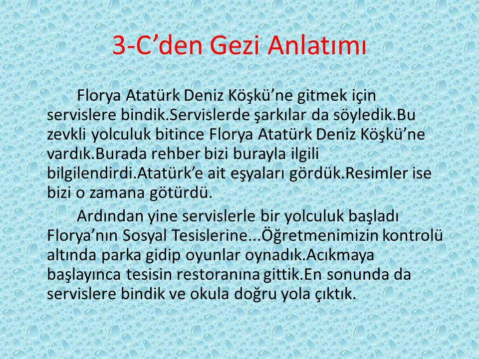 3-C'den Gezi Anlatımı