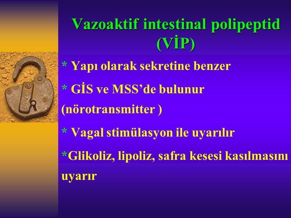 Vazoaktif intestinal polipeptid (VİP)