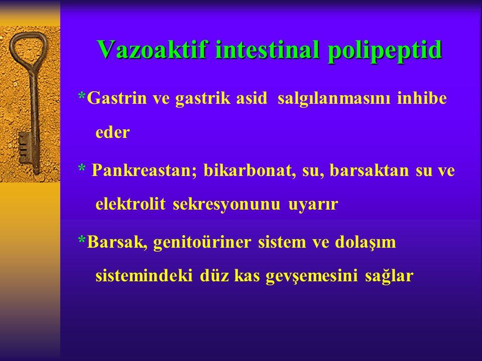 Vazoaktif intestinal polipeptid