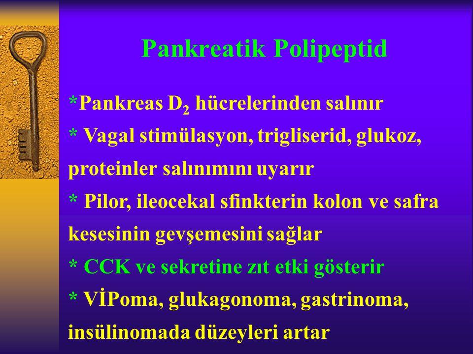 Pankreatik Polipeptid