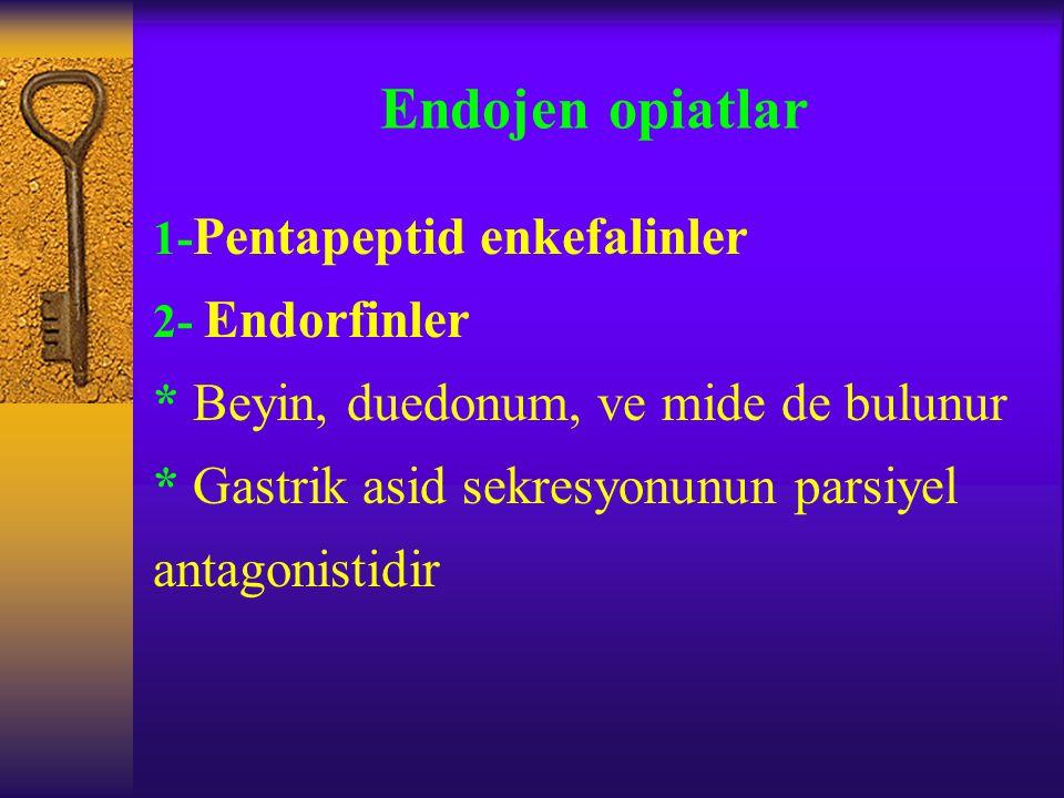 Endojen opiatlar * Beyin, duedonum, ve mide de bulunur