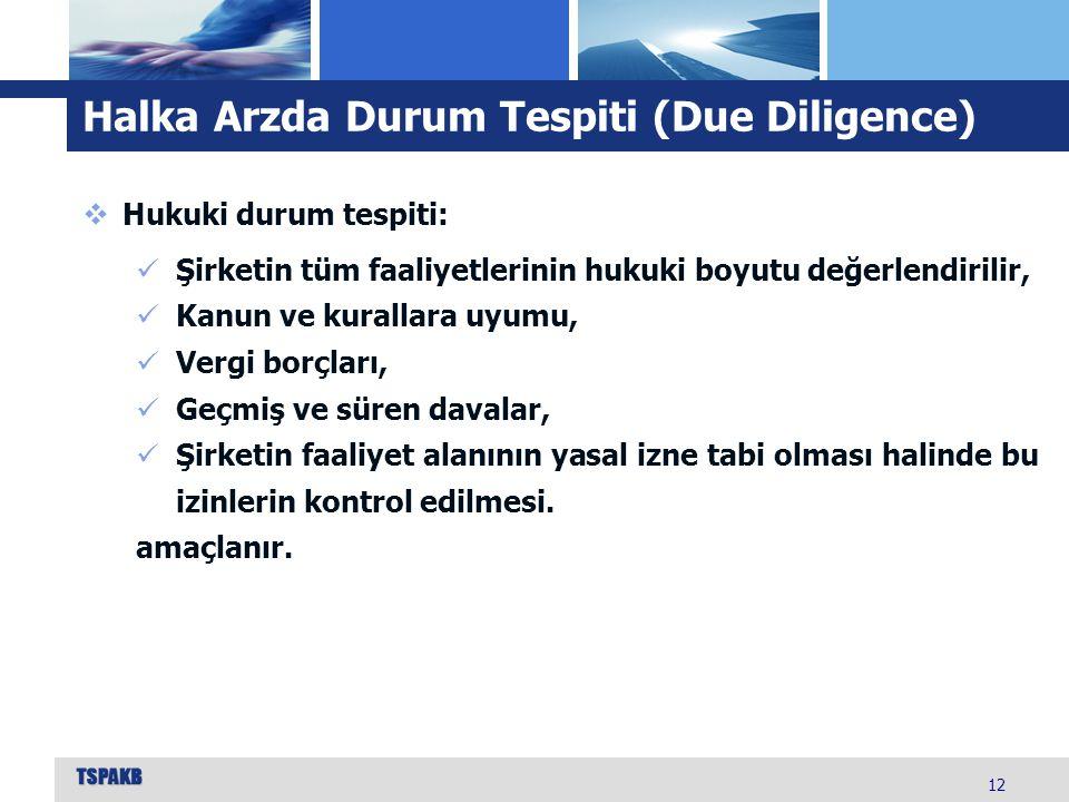 Halka Arzda Durum Tespiti (Due Diligence)