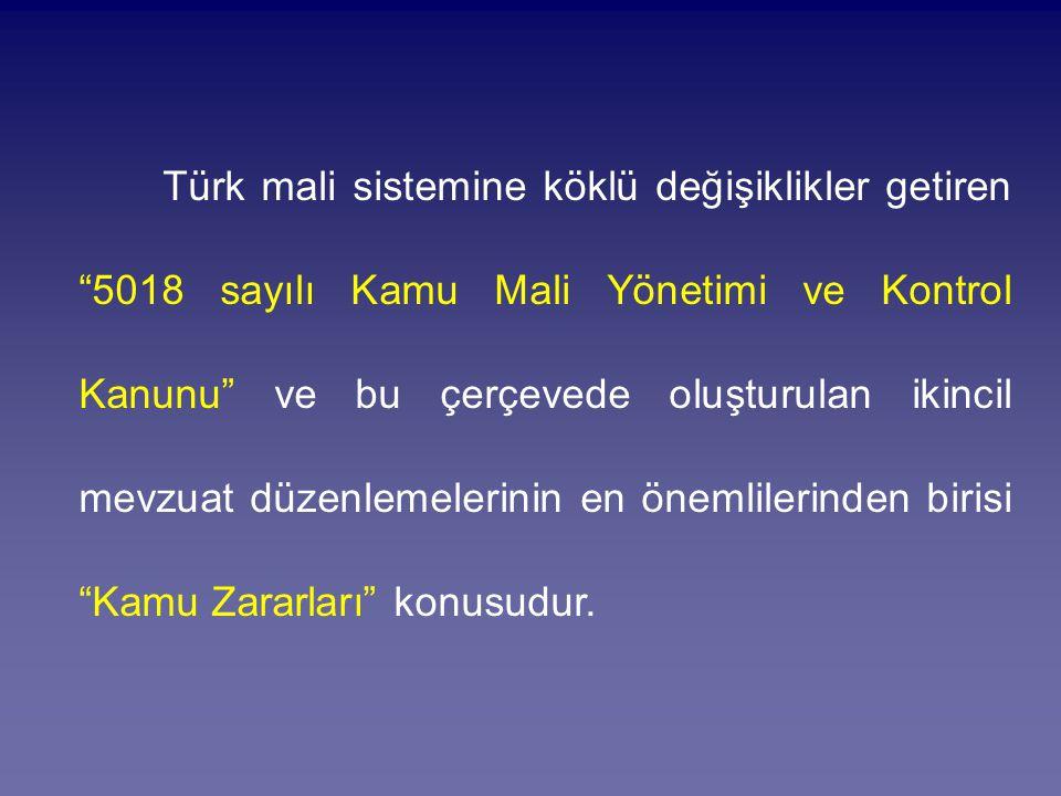 Türk mali sistemine köklü değişiklikler getiren 5018 sayılı Kamu Mali Yönetimi ve Kontrol Kanunu ve bu çerçevede oluşturulan ikincil mevzuat düzenlemelerinin en önemlilerinden birisi Kamu Zararları konusudur.