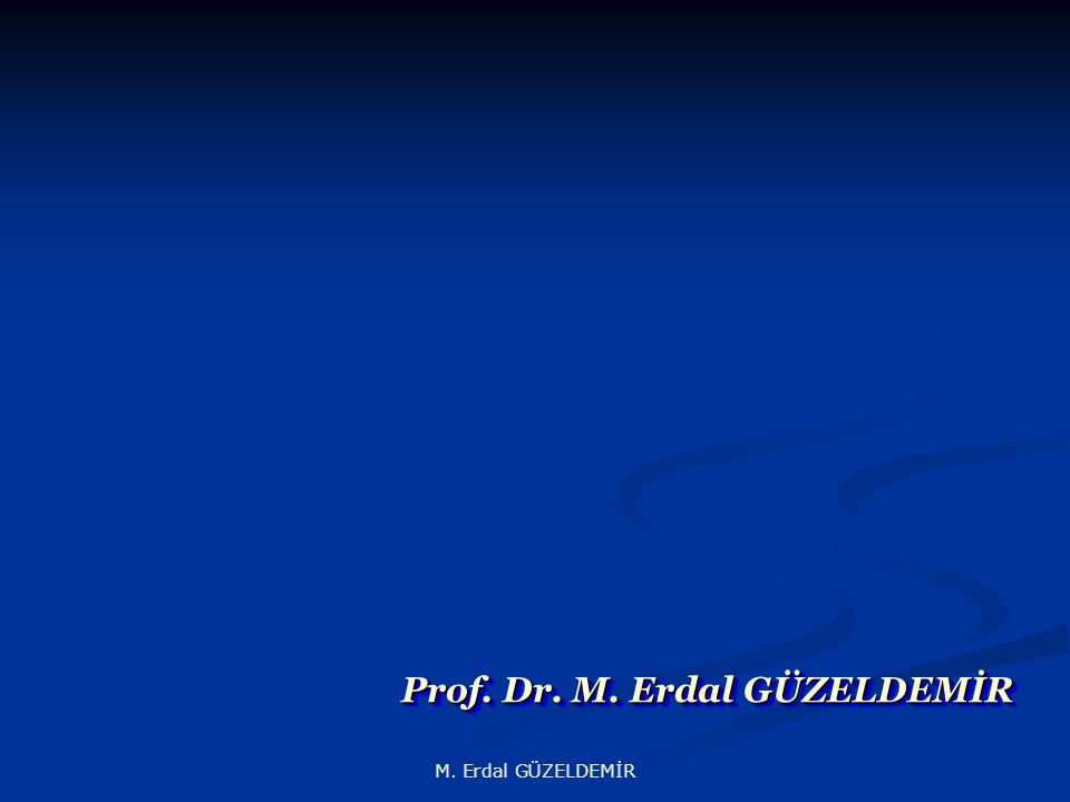 Prof. Dr. M. Erdal GÜZELDEMİR