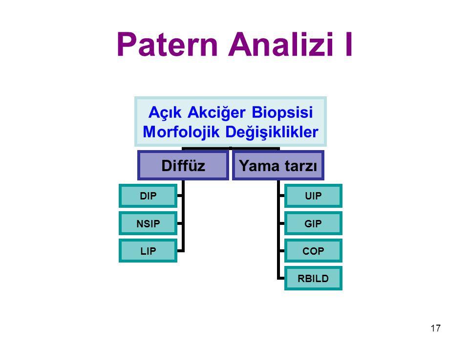 Patern Analizi I