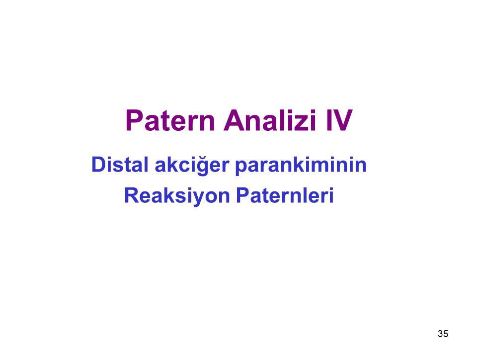Distal akciğer parankiminin Reaksiyon Paternleri