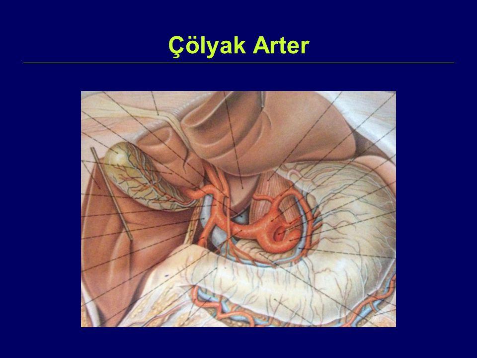 Çölyak Arter