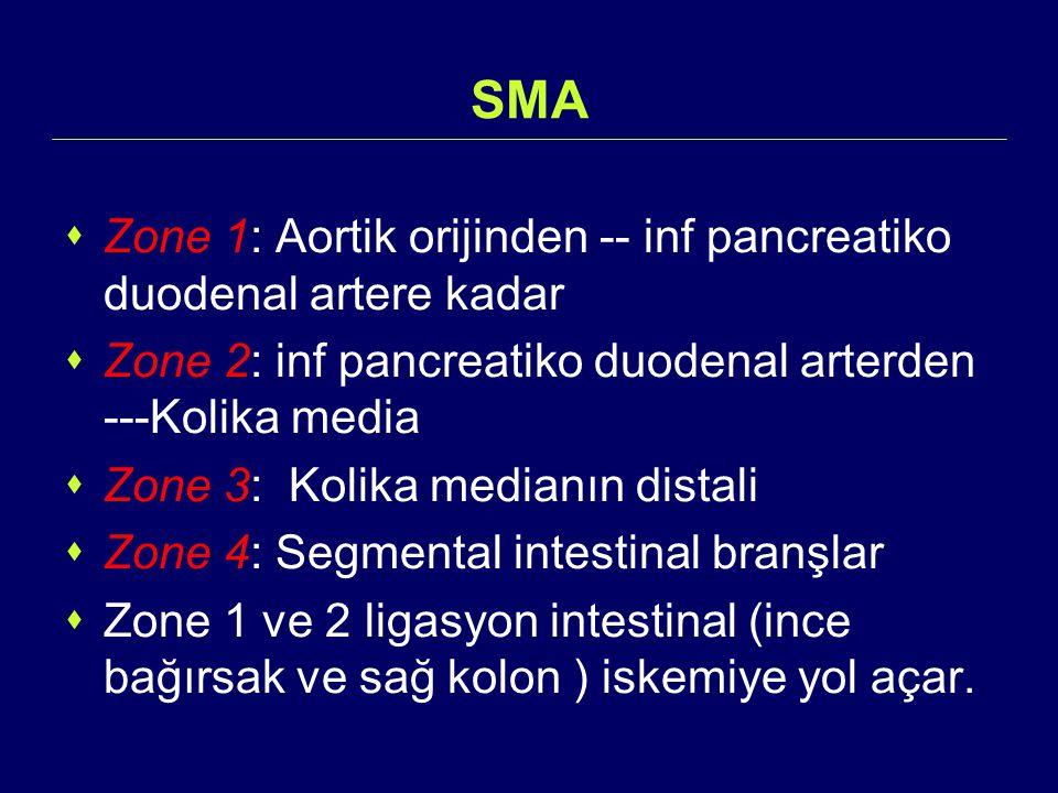 SMA Zone 1: Aortik orijinden -- inf pancreatiko duodenal artere kadar