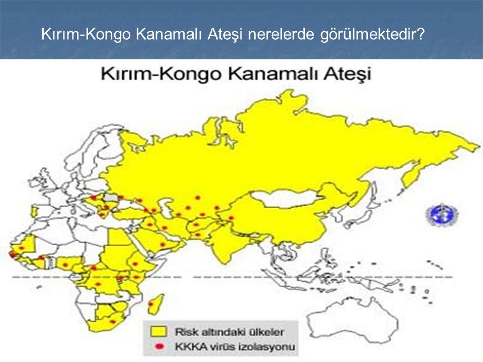 Kırım-Kongo Kanamalı Ateşi nerelerde görülmektedir