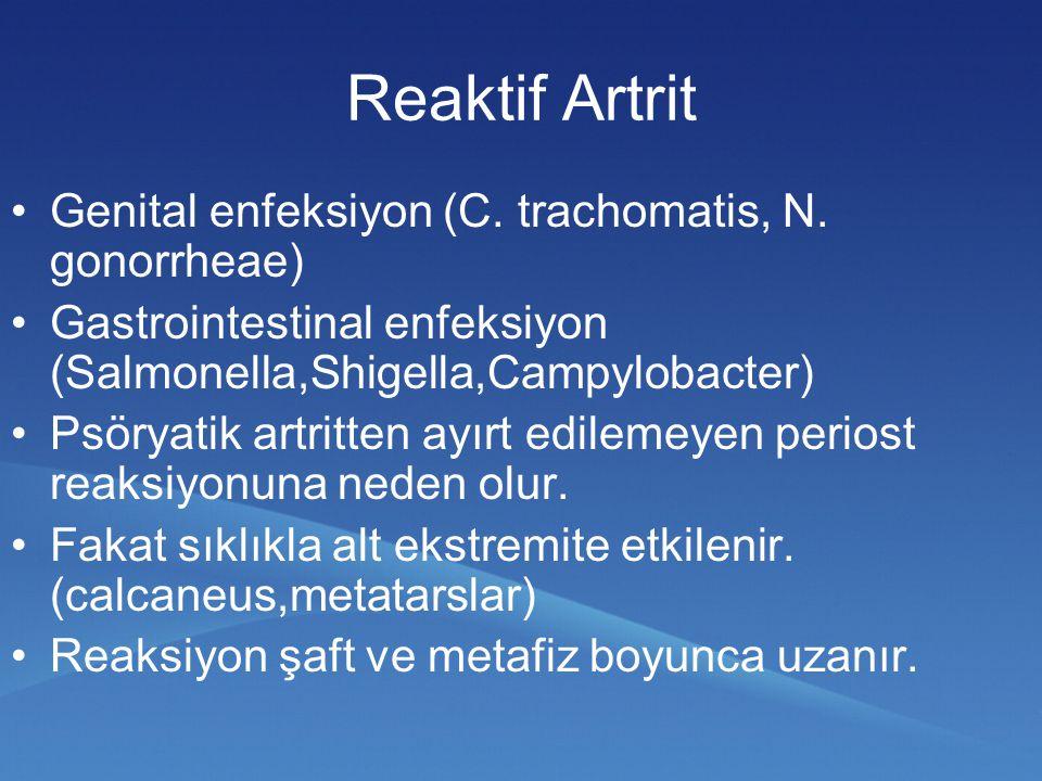 Reaktif Artrit Genital enfeksiyon (C. trachomatis, N. gonorrheae)
