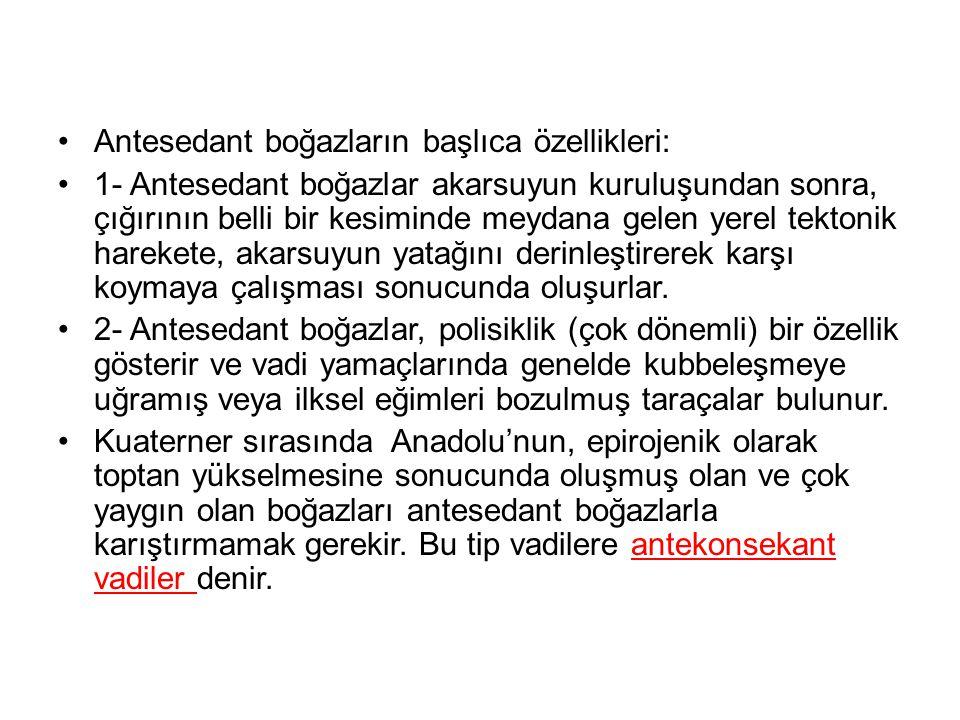 Antesedant boğazların başlıca özellikleri: