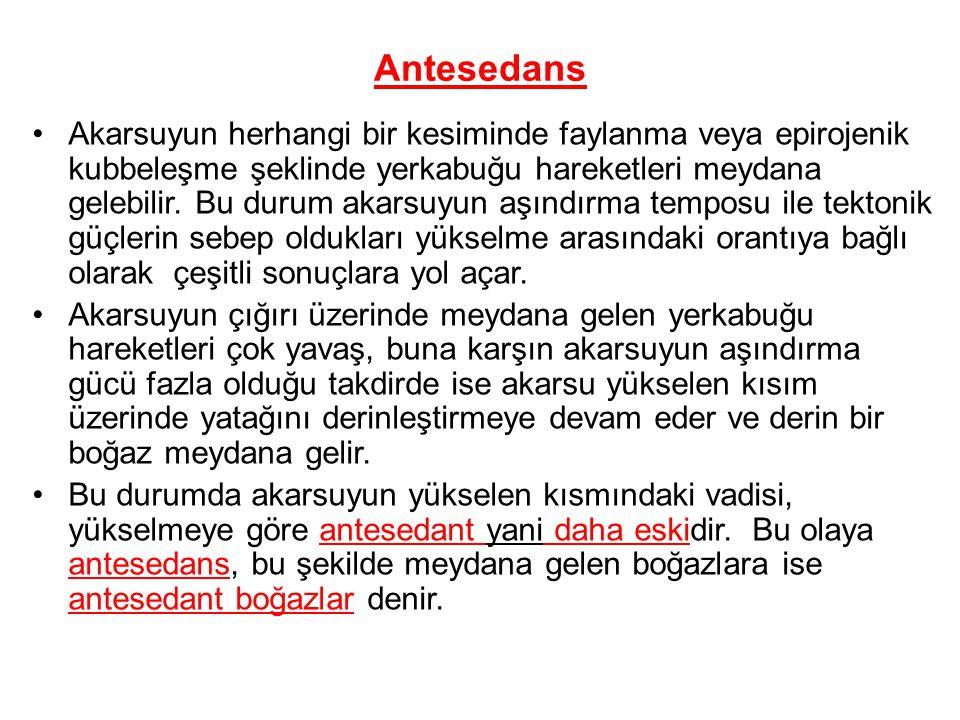 Antesedans