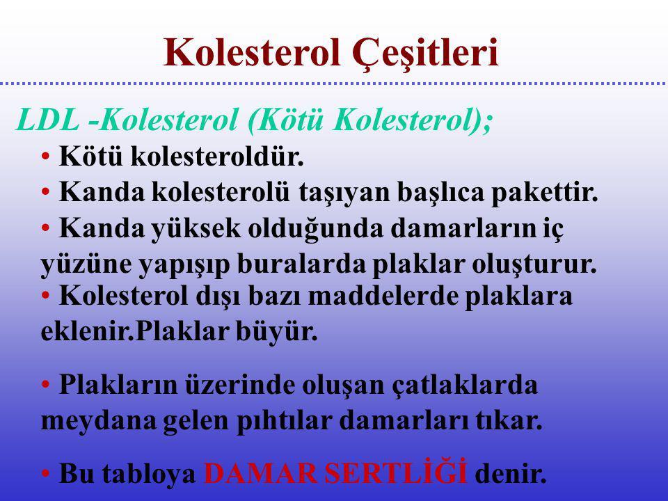LDL -Kolesterol (Kötü Kolesterol);