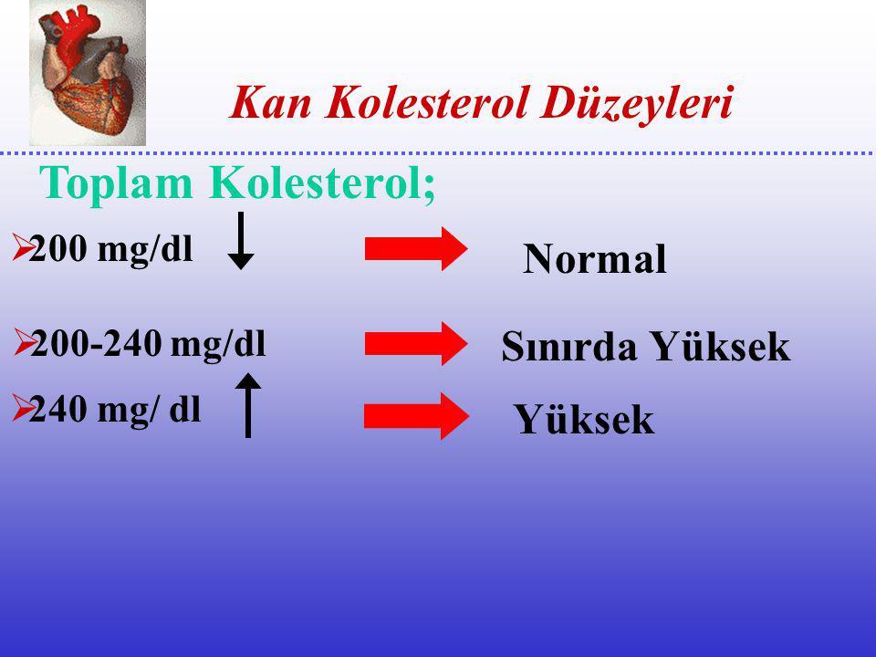 Kan Kolesterol Düzeyleri