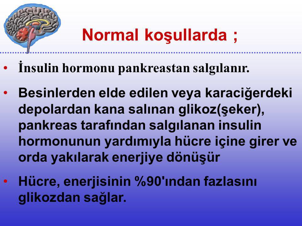 Normal koşullarda ; İnsulin hormonu pankreastan salgılanır.
