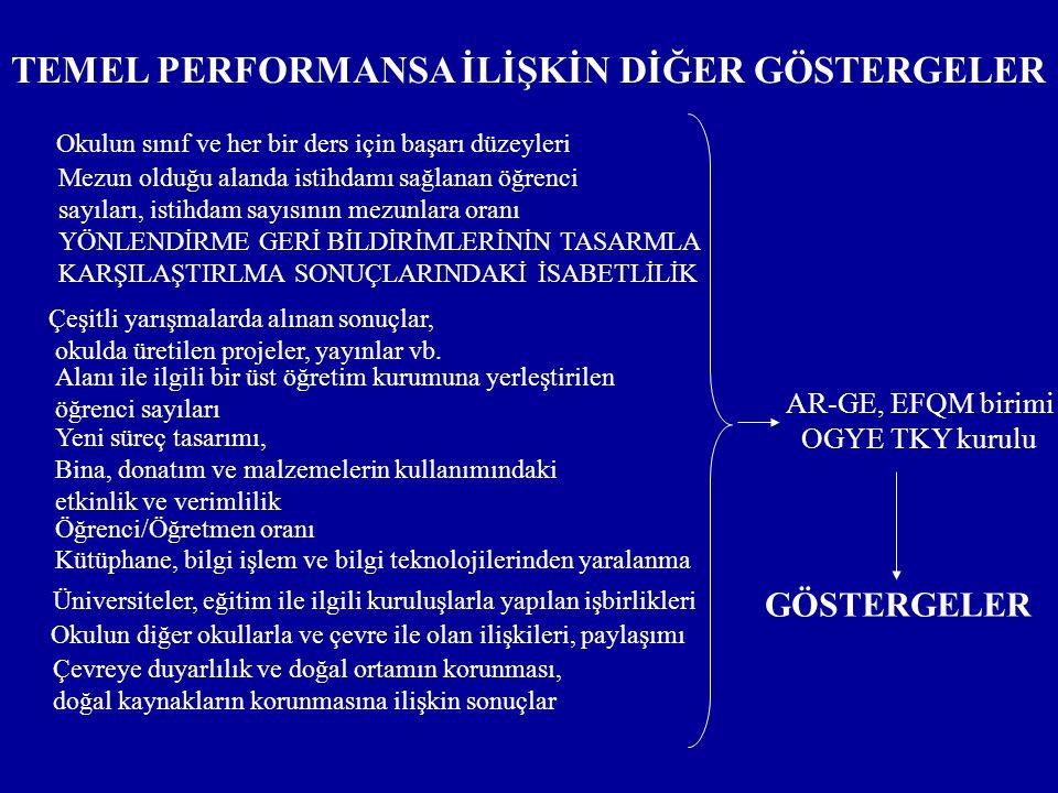 TEMEL PERFORMANSA İLİŞKİN DİĞER GÖSTERGELER