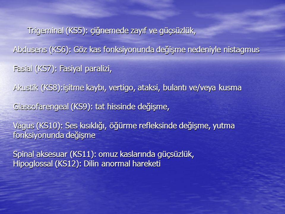 Trigeminal (KS5): çiğnemede zayıf ve güçsüzlük,