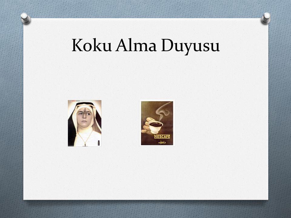 Koku Alma Duyusu