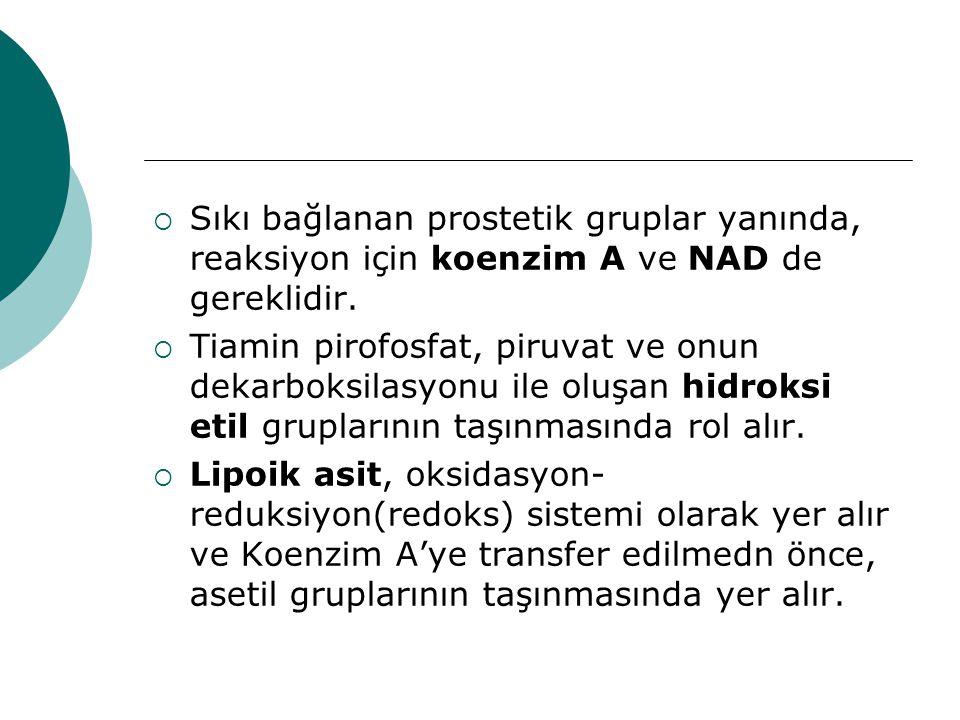 Sıkı bağlanan prostetik gruplar yanında, reaksiyon için koenzim A ve NAD de gereklidir.