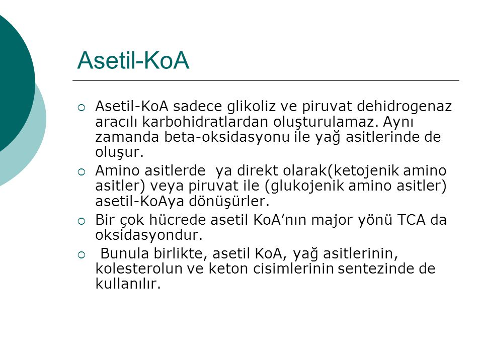 Asetil-KoA