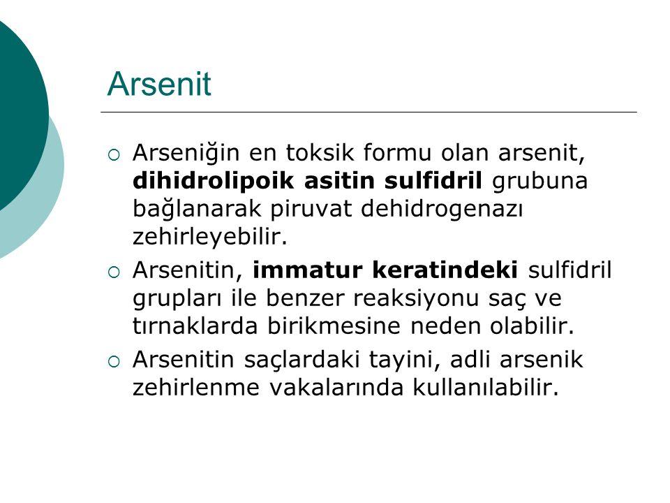 Arsenit Arseniğin en toksik formu olan arsenit, dihidrolipoik asitin sulfidril grubuna bağlanarak piruvat dehidrogenazı zehirleyebilir.