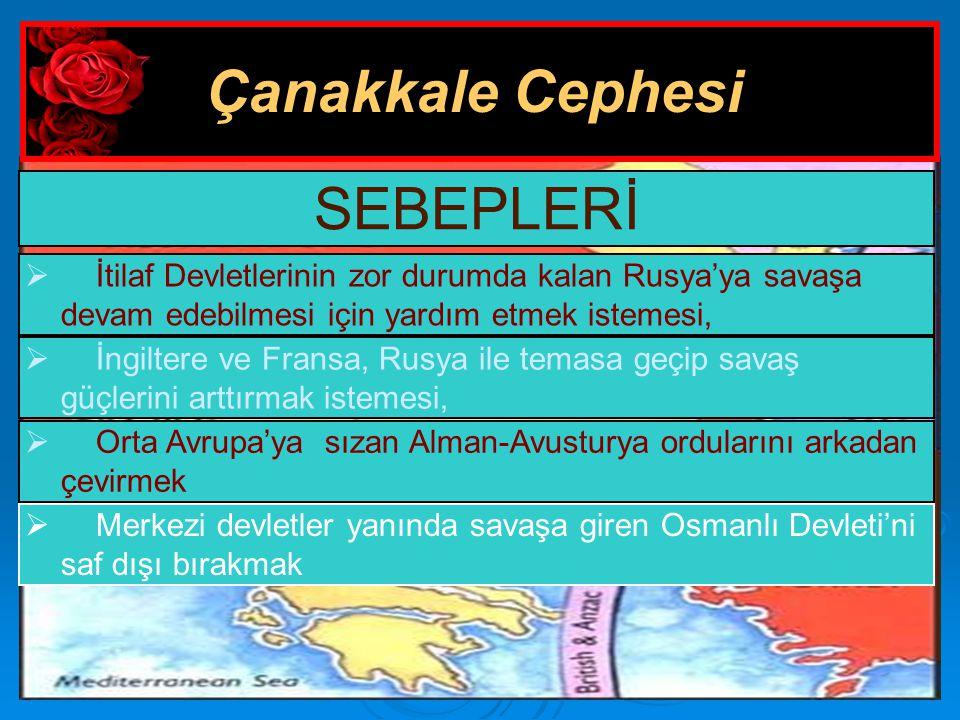 Çanakkale Cephesi SEBEPLERİ