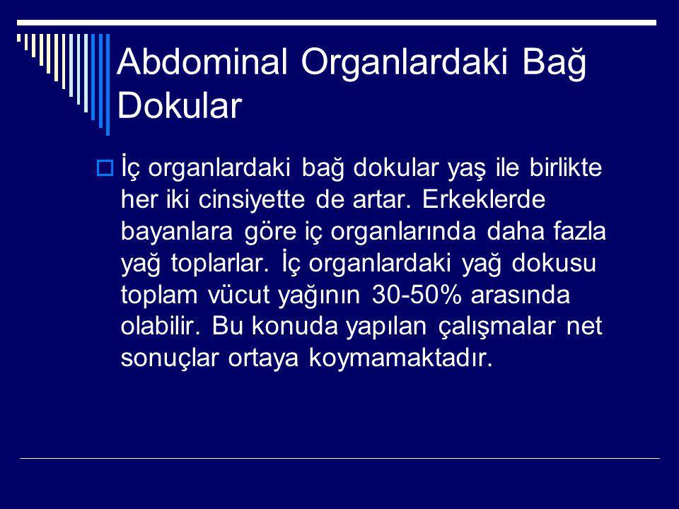 Abdominal Organlardaki Bağ Dokular