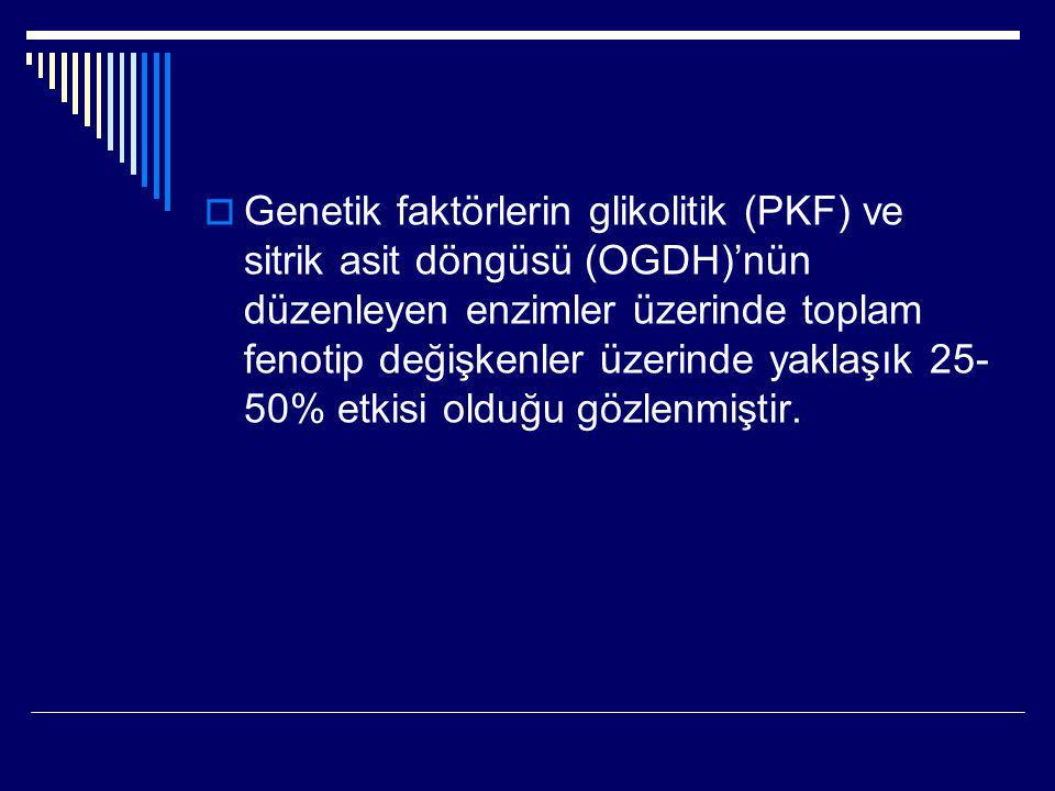 Genetik faktörlerin glikolitik (PKF) ve sitrik asit döngüsü (OGDH)'nün düzenleyen enzimler üzerinde toplam fenotip değişkenler üzerinde yaklaşık 25-50% etkisi olduğu gözlenmiştir.