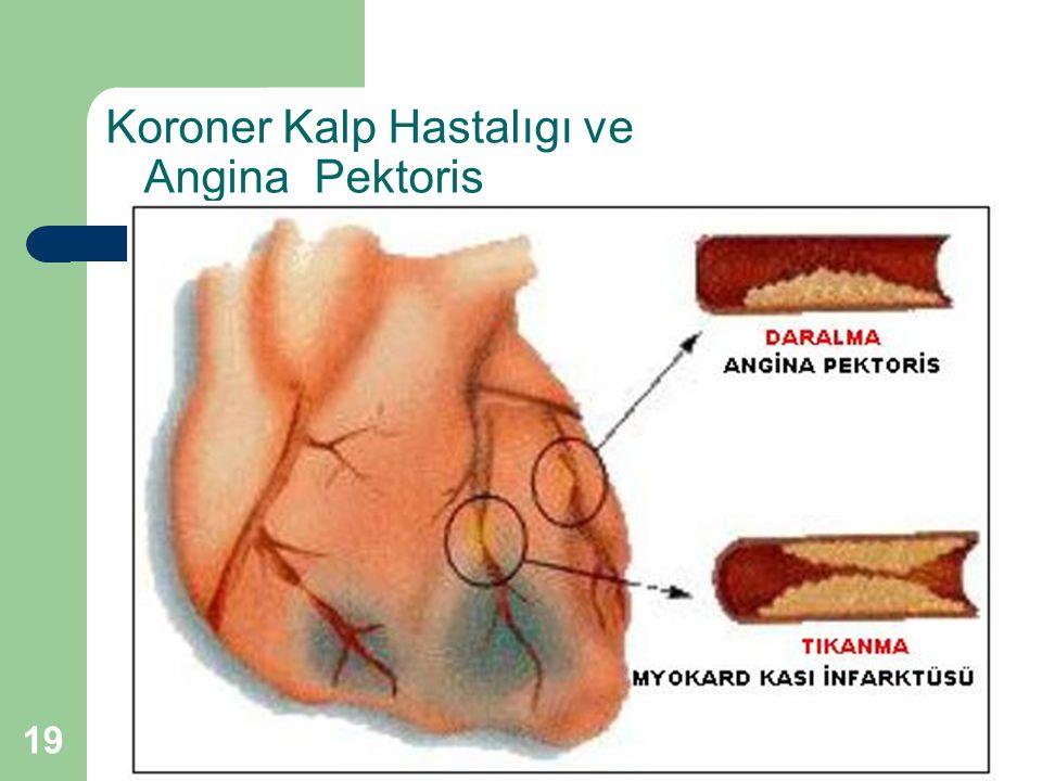 Koroner Kalp Hastalıgı ve Angina Pektoris