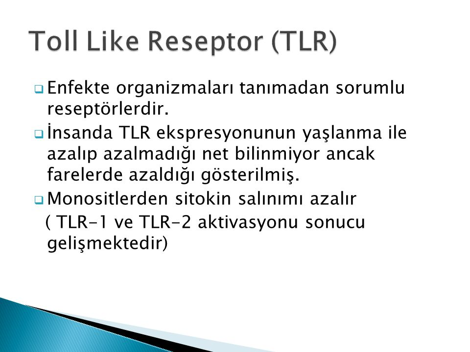 Toll Like Reseptor (TLR)