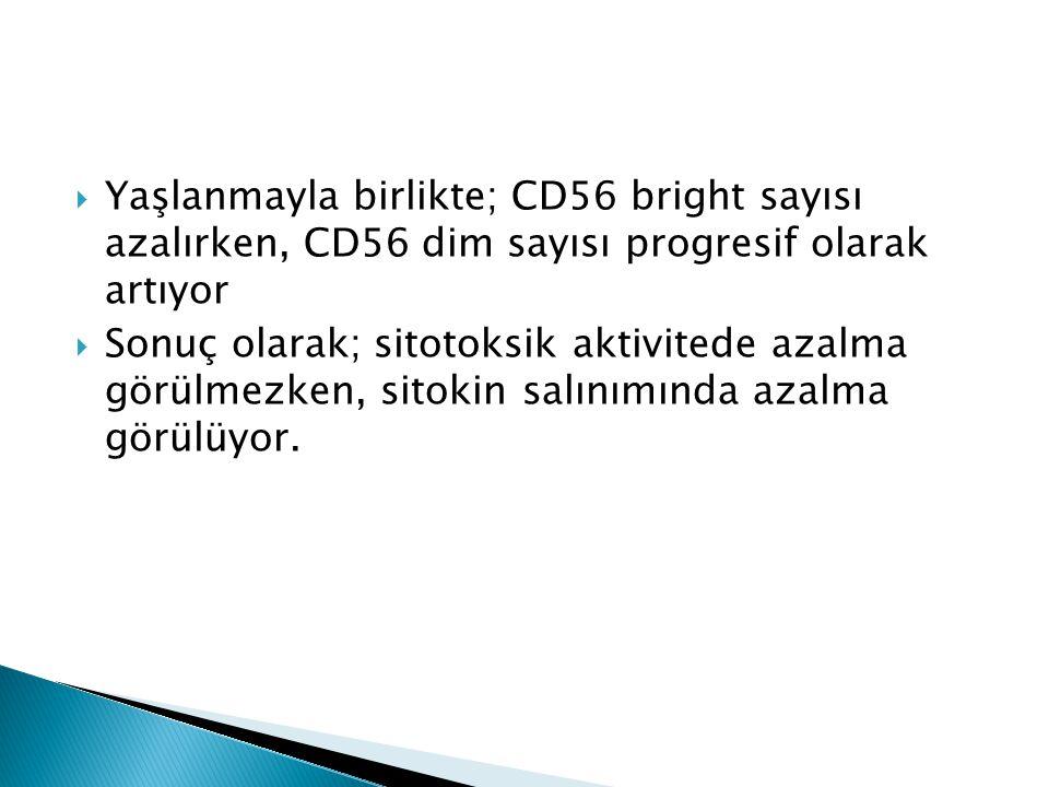 Yaşlanmayla birlikte; CD56 bright sayısı azalırken, CD56 dim sayısı progresif olarak artıyor