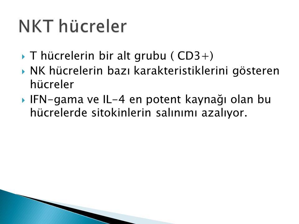 NKT hücreler T hücrelerin bir alt grubu ( CD3+)