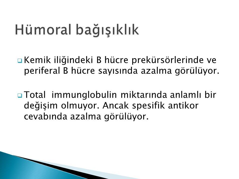 Hümoral bağışıklık Kemik iliğindeki B hücre prekürsörlerinde ve periferal B hücre sayısında azalma görülüyor.