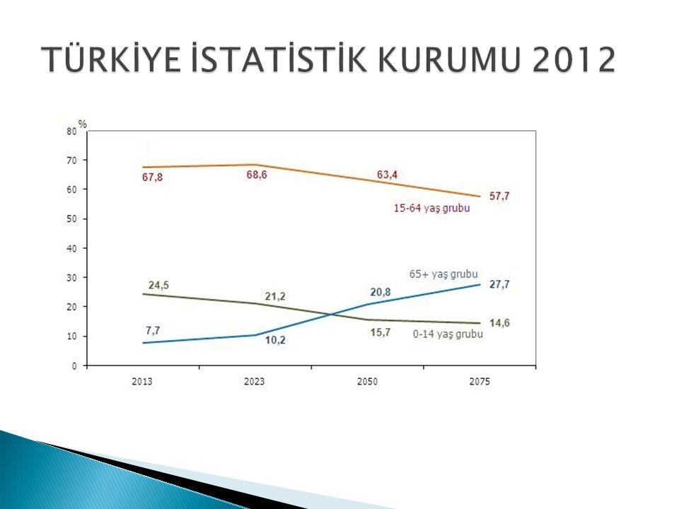 TÜRKİYE İSTATİSTİK KURUMU 2012