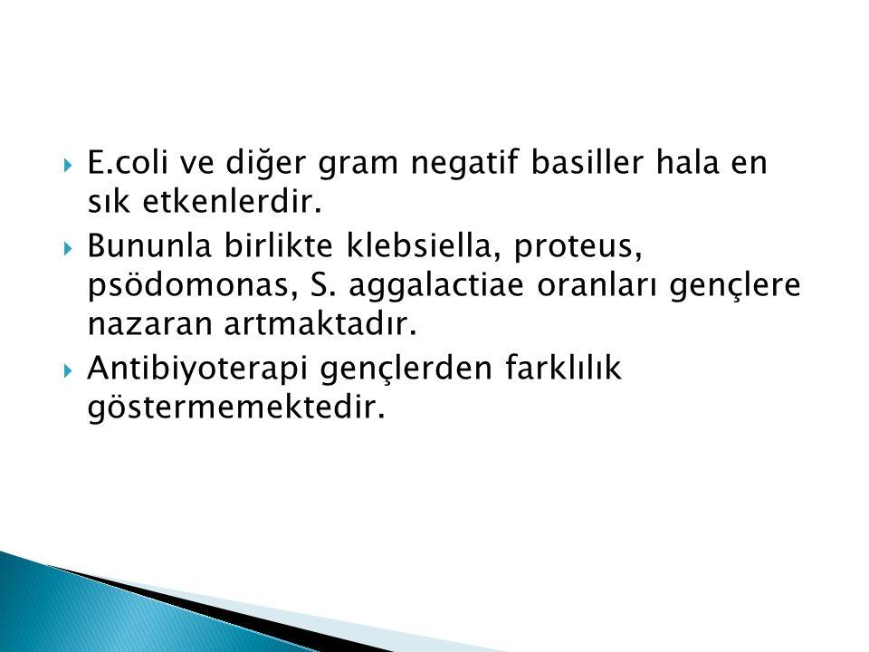 E.coli ve diğer gram negatif basiller hala en sık etkenlerdir.