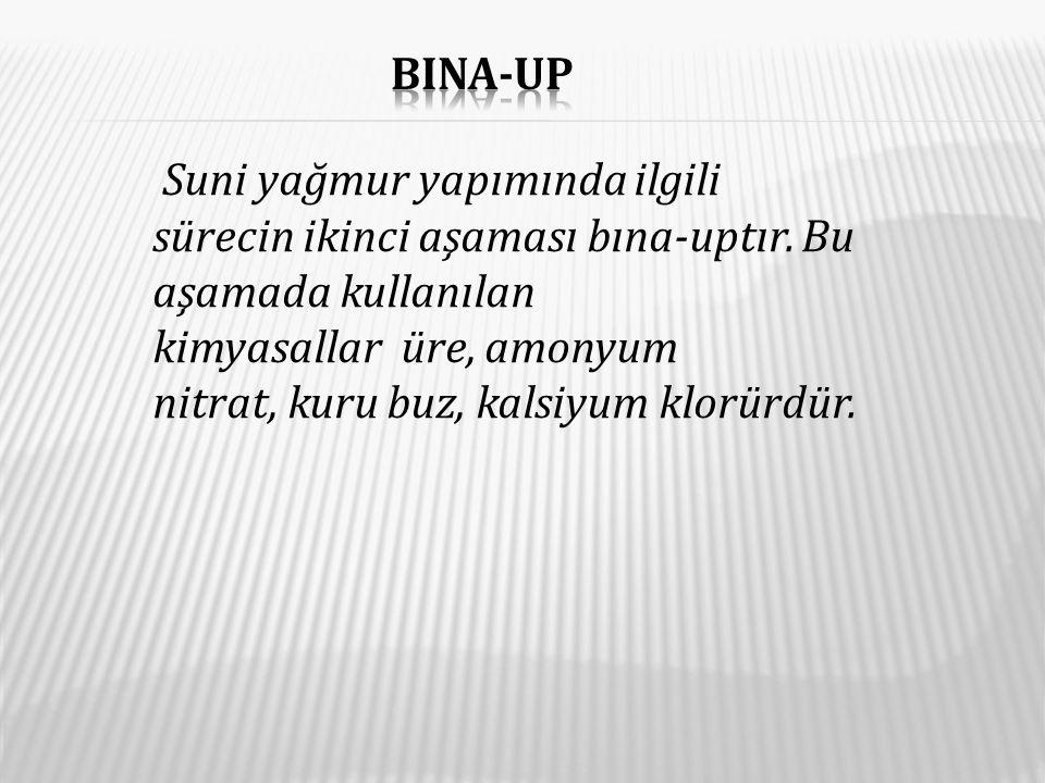 Bina-up