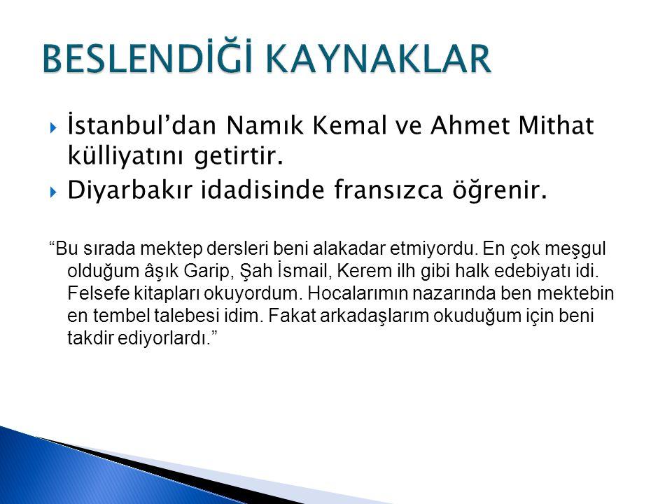 BESLENDİĞİ KAYNAKLAR İstanbul'dan Namık Kemal ve Ahmet Mithat külliyatını getirtir. Diyarbakır idadisinde fransızca öğrenir.