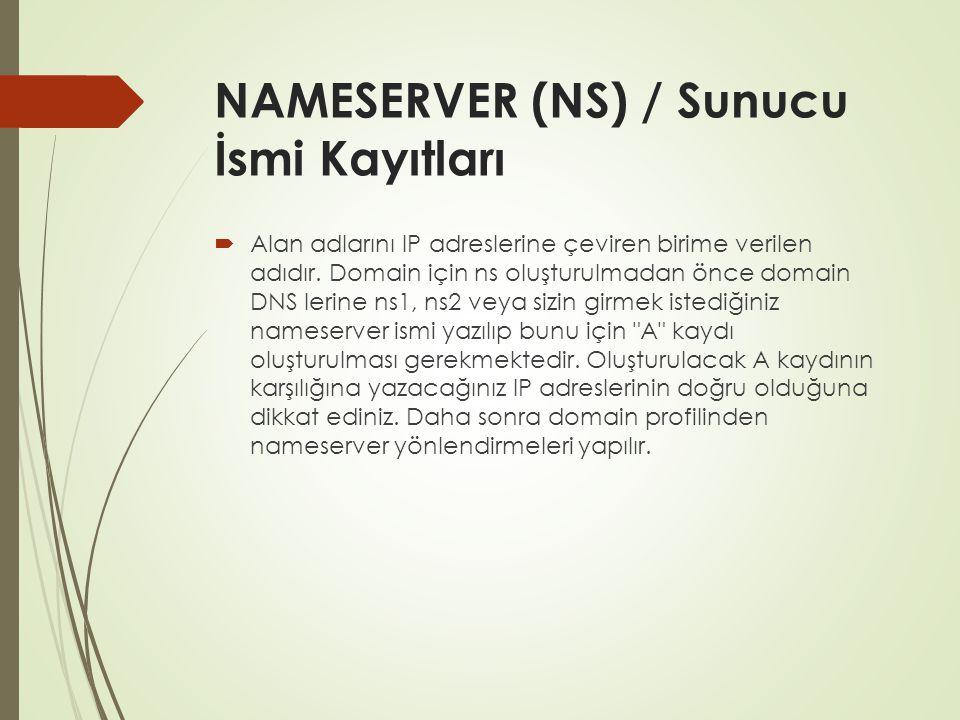 NAMESERVER (NS) / Sunucu İsmi Kayıtları