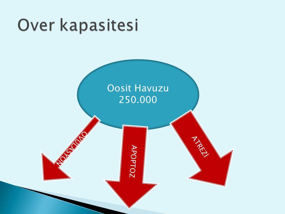 Over kapasitesi Oosit Havuzu 250.000 ATREZİ OVULASYON APOPTOZ